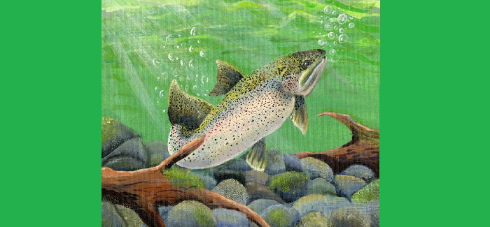 Texas State-Fish Art Contest 2017 Winners Announced