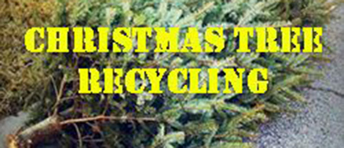North Richland Hills: Christmas Tree Recycling