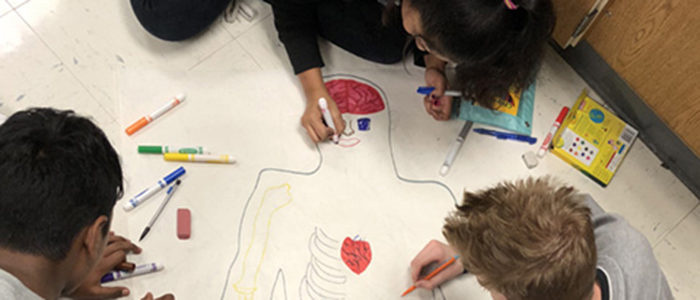 HEB ISD: Euless Jr. High 9th Grade Biology Classes Create Body Diagram Posters