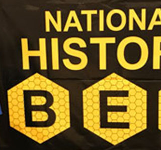 Tate Strzinek Represents BCIS, KISD At National History Bee