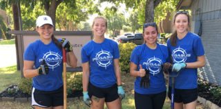 Grapevine: Pegasus Interns Step Up to help