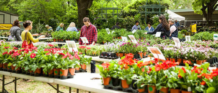Fort Worth: Spring Plant Sale sprouts March 29-30 at Botanic Garden
