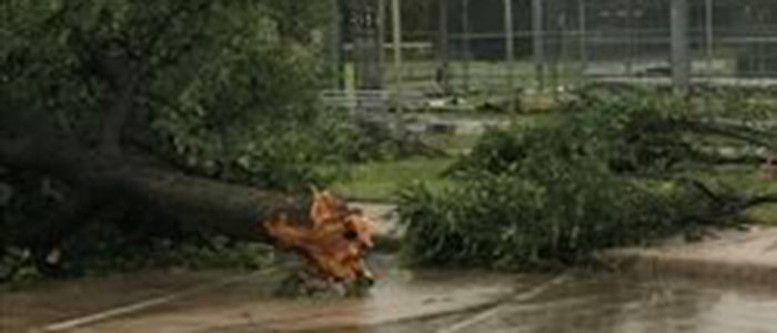 NRH: Storm Cleanup
