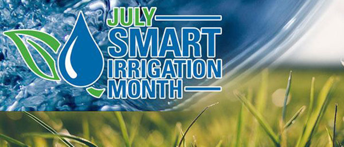 Irving: July is Smart Irrigation Month, so Start Studying!