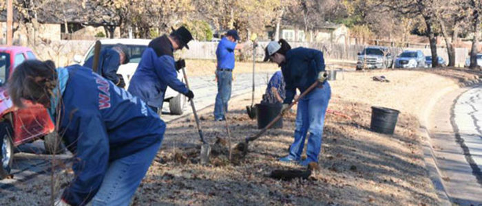 Fort Worth: Become a citizen forester
